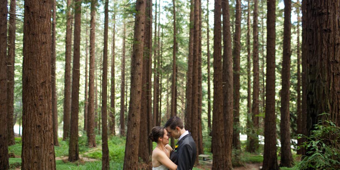 tilden park brazilian room wedding jill chris