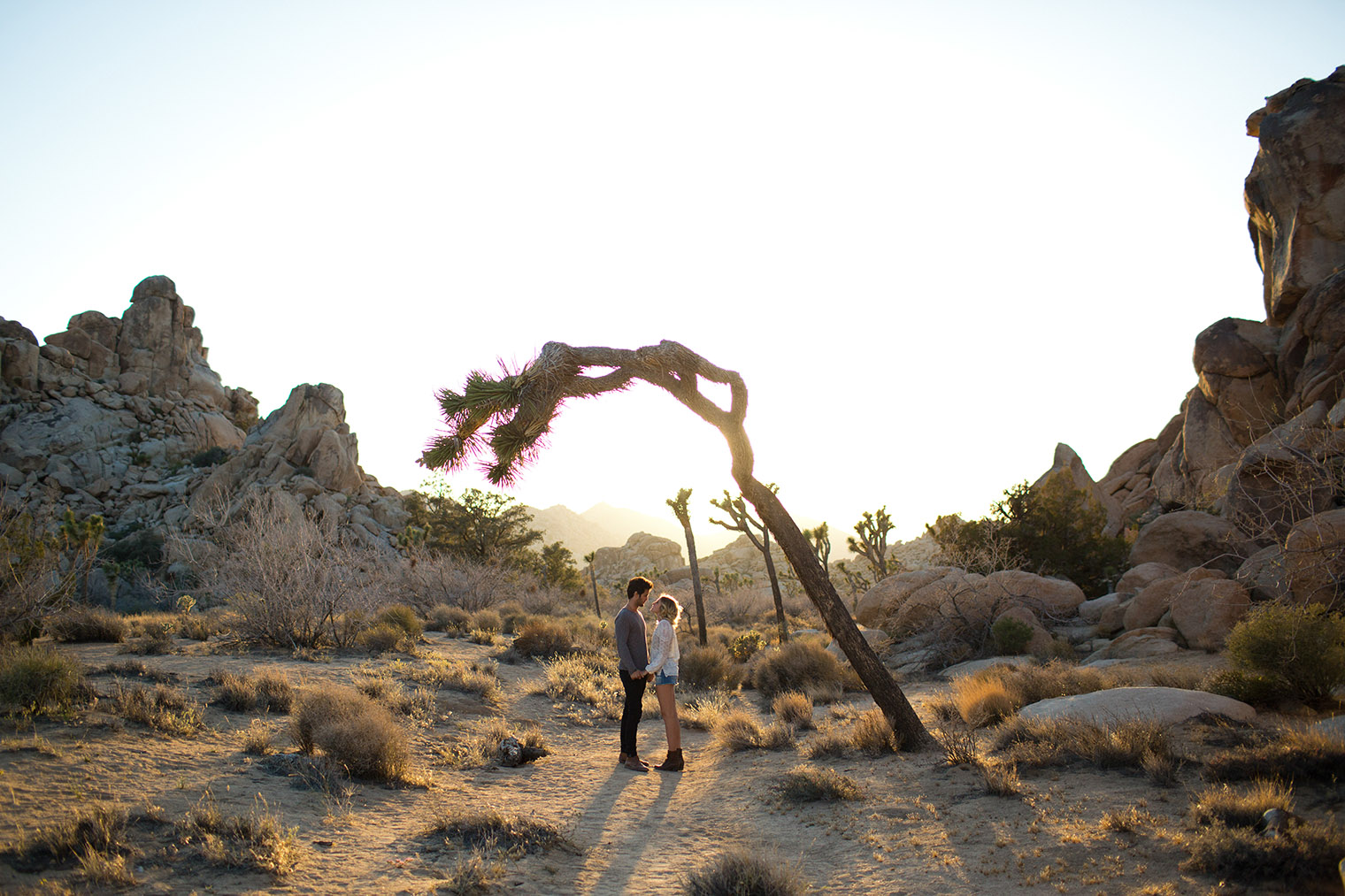joshua tree engagement photos _113