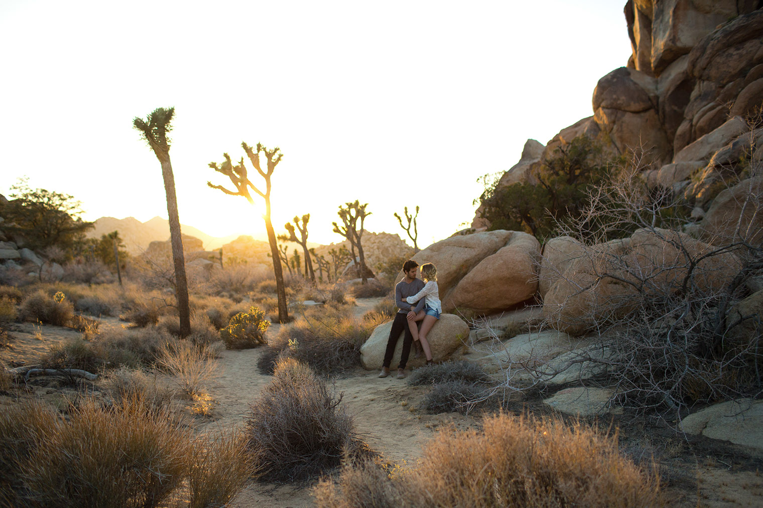 joshua tree engagement photos _125