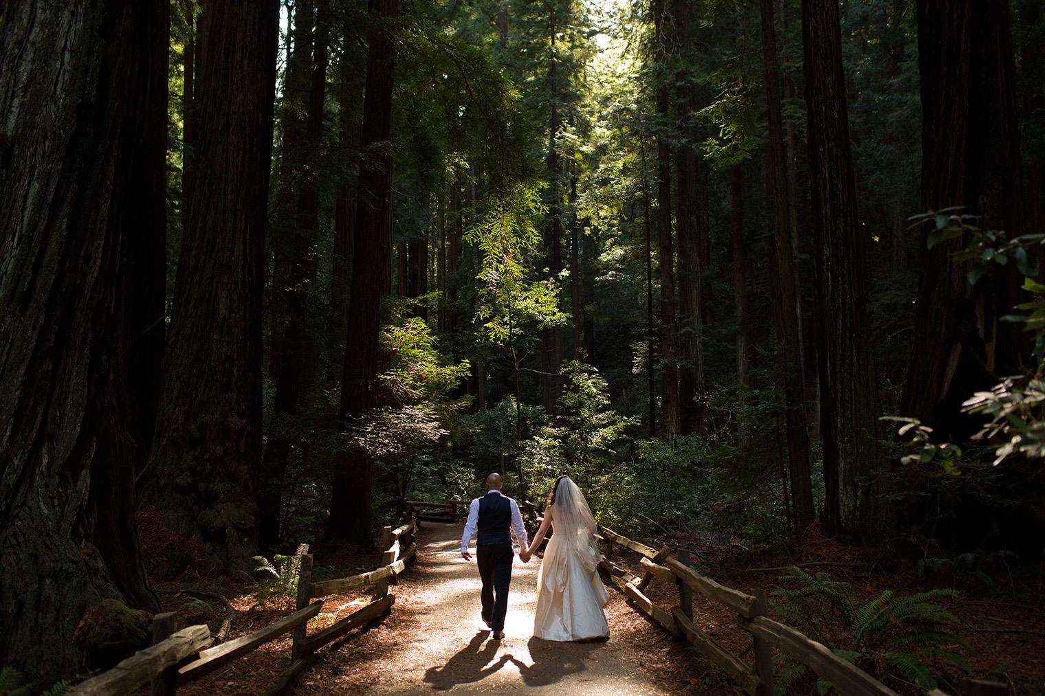 muir woods wedding photographer