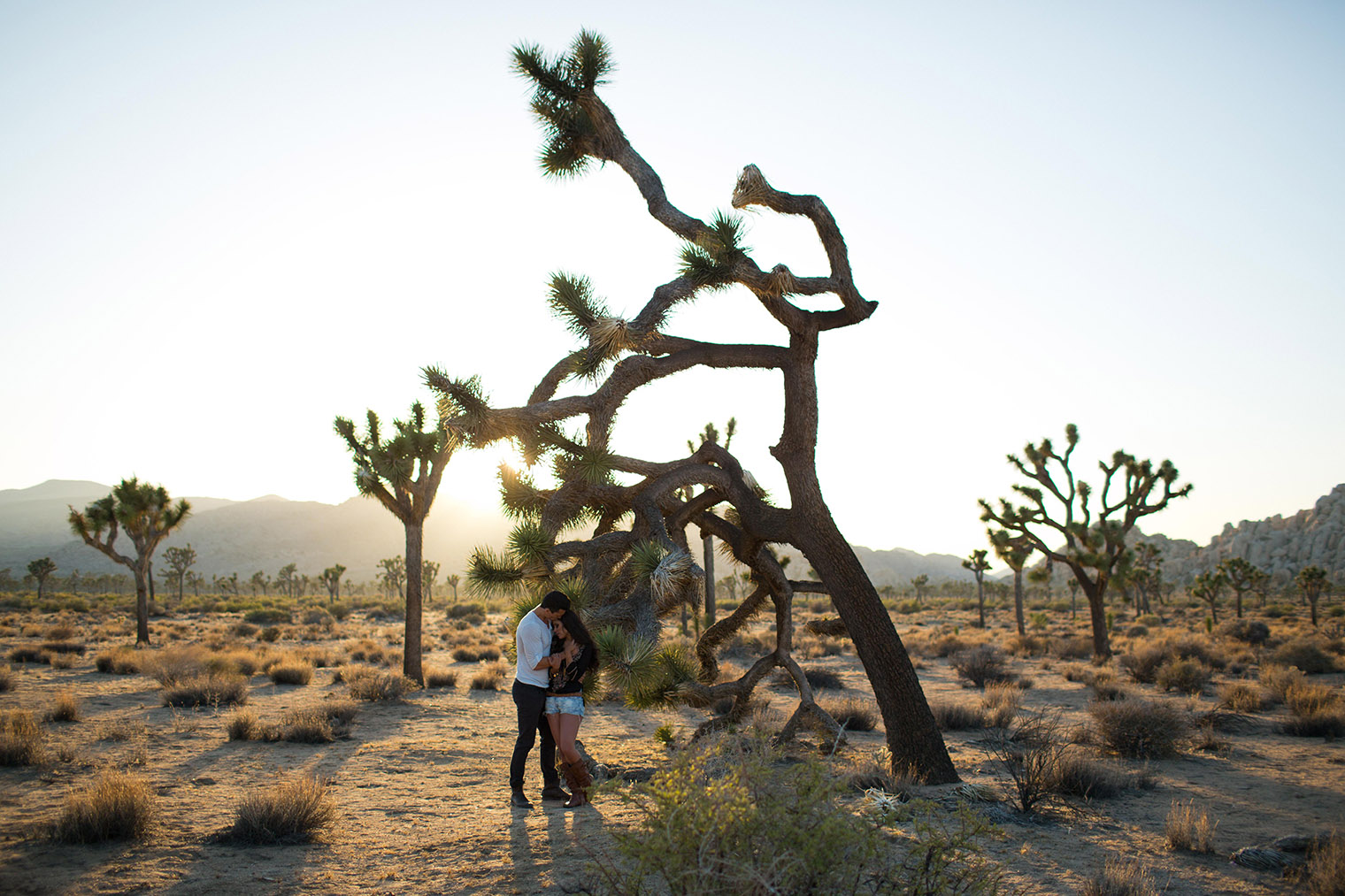 joshua tree engagement session_164