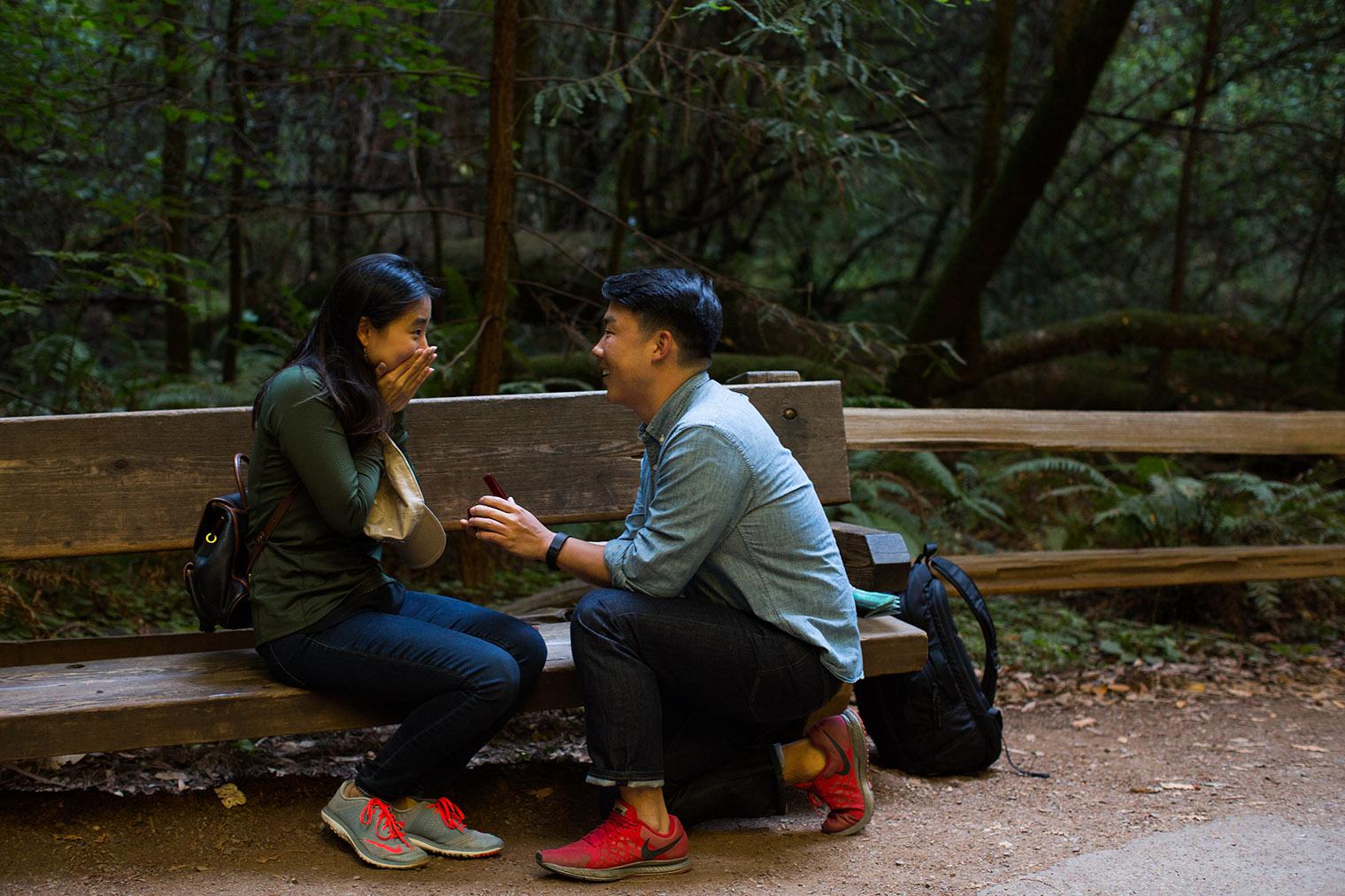 muir woods proposal