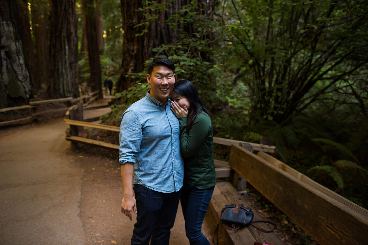 muir woods proposal wedding photographer