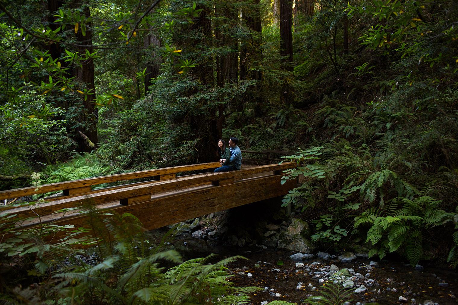 muir woods proposal captured