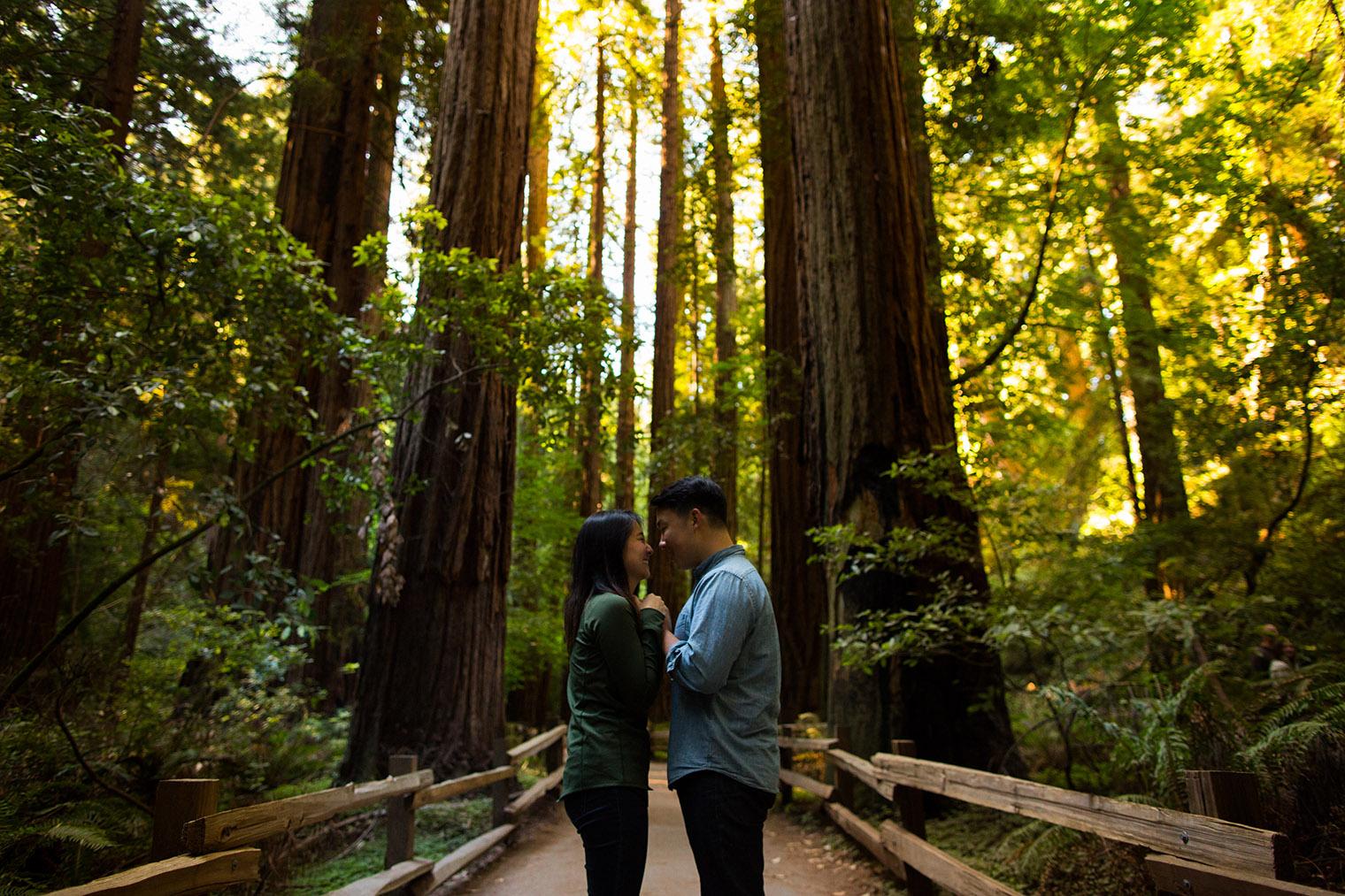redwood proposal photographer