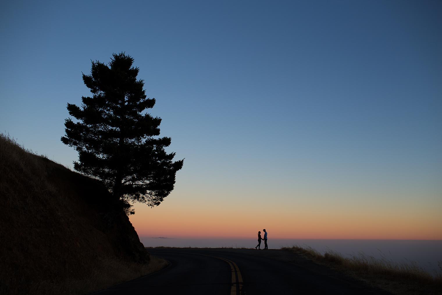 Mount Tamalpais State Park Engagement Photos