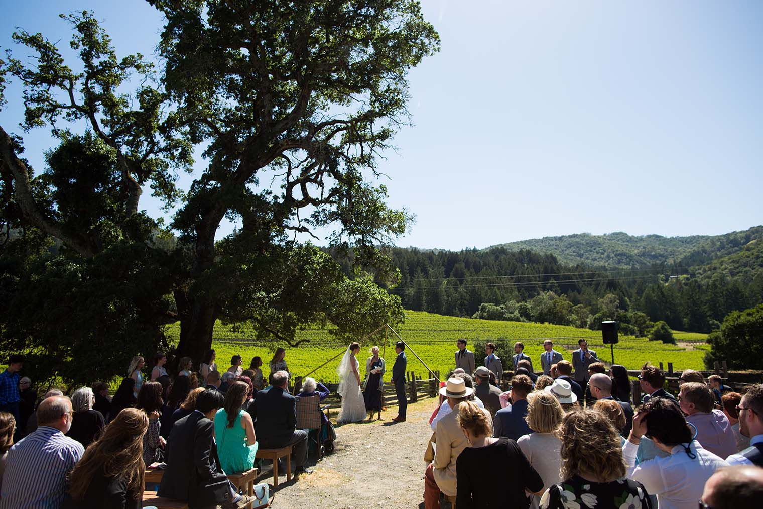 wedding ceremony at jack london state historic park
