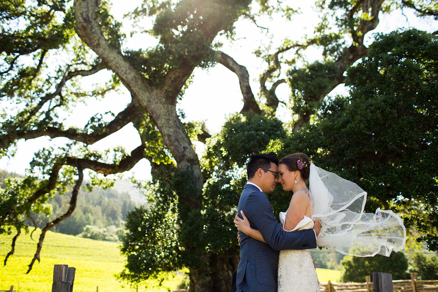 wedding photography at jack london state historic park
