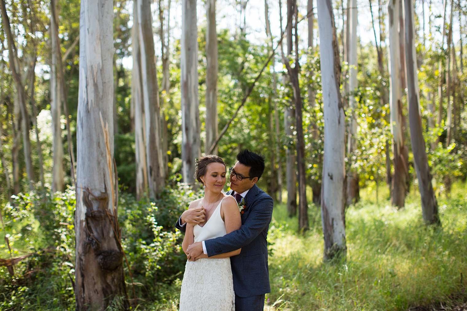 jack london state historic park wedding photos