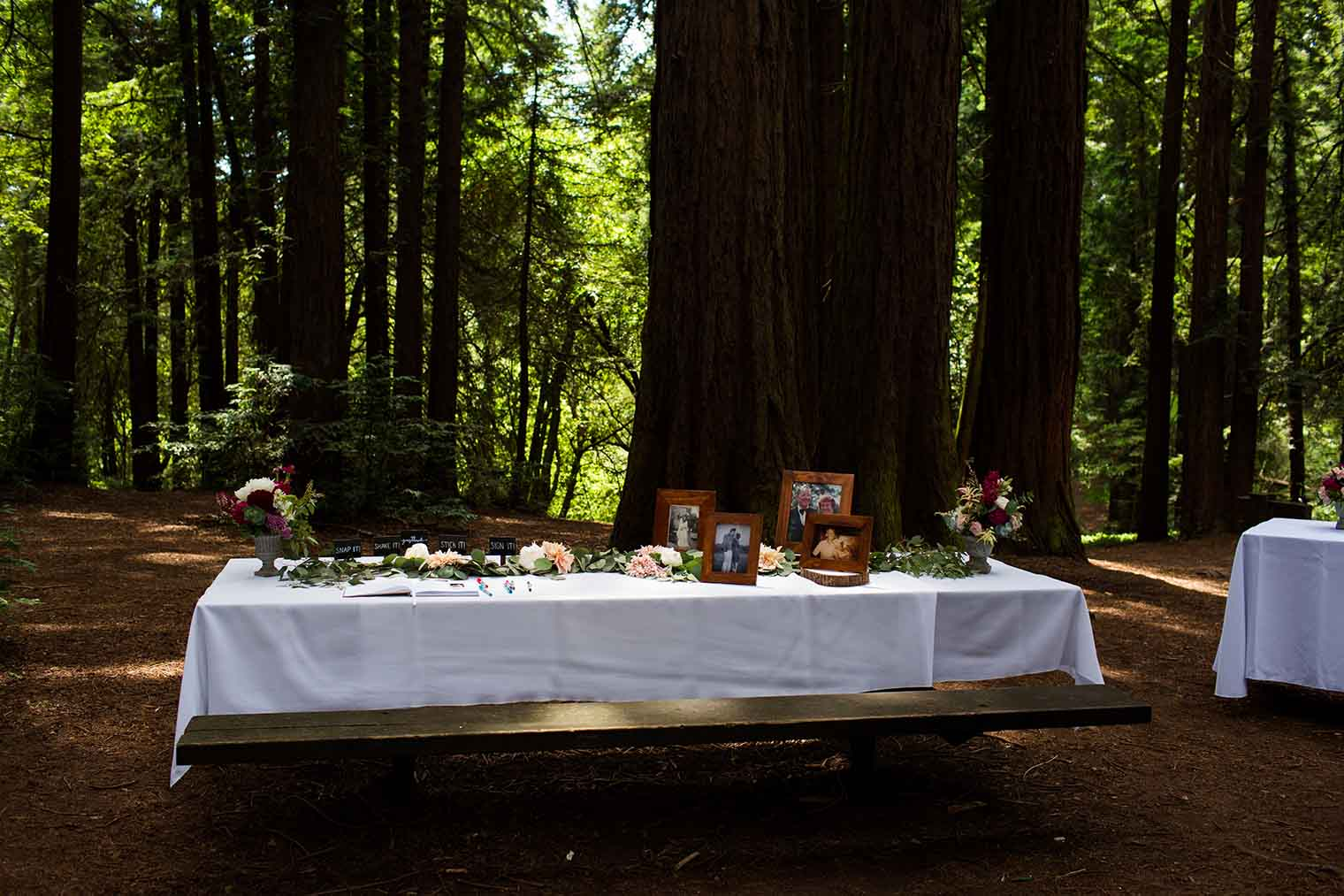Wedding Details at Roberts Regional Park