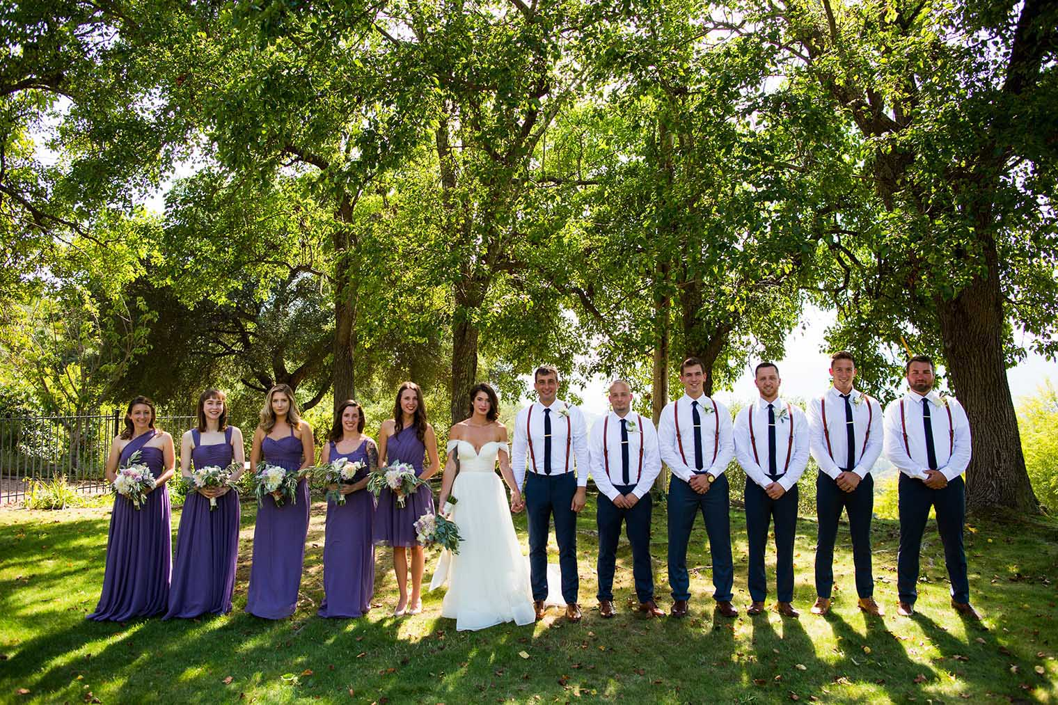 formal photo of bridal party