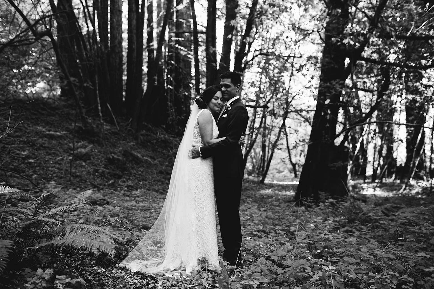 wedding portraits in the forest near Guerneville, California