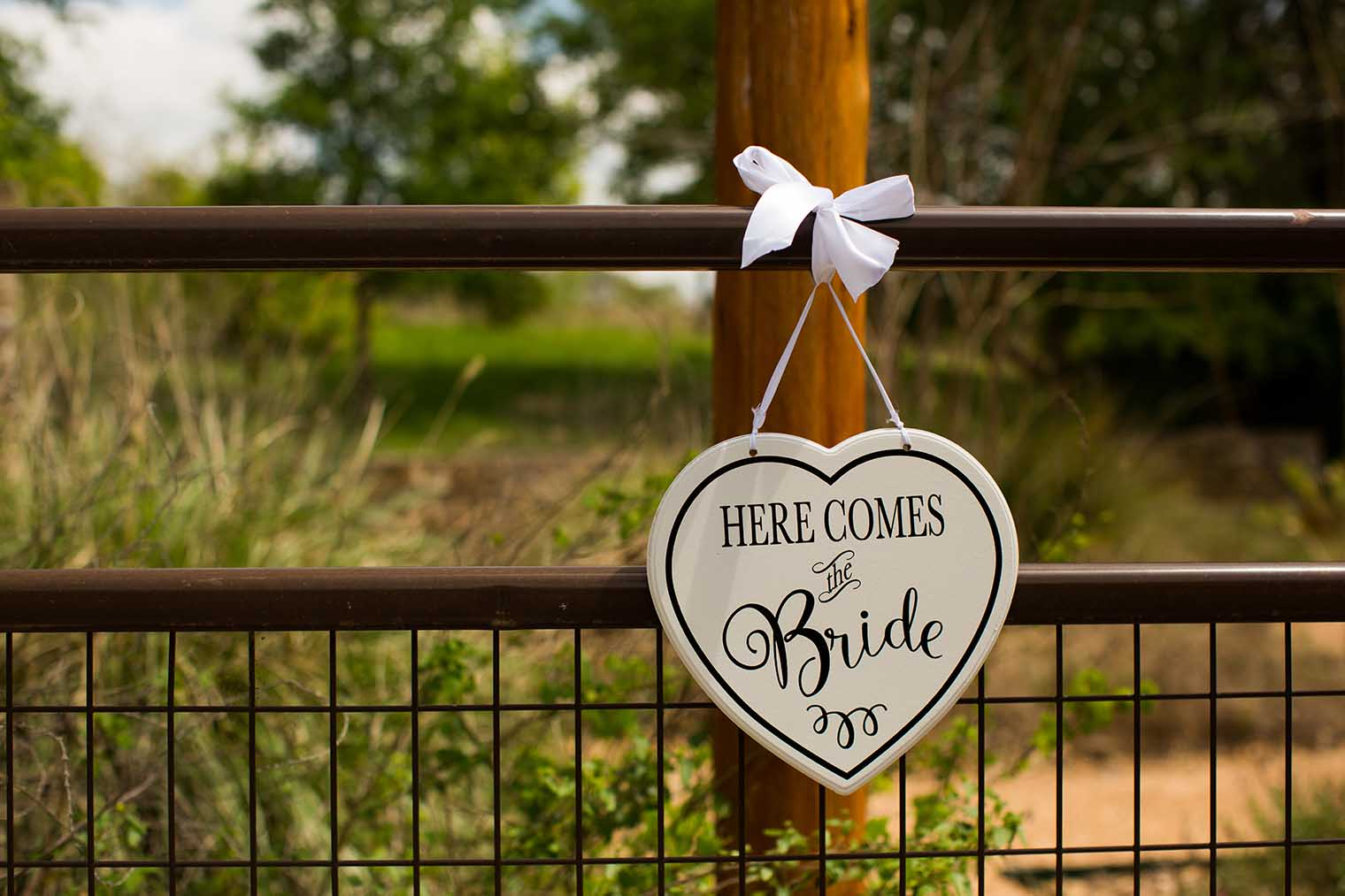 Camp Lucy Wedding in Dripping Springs, TX