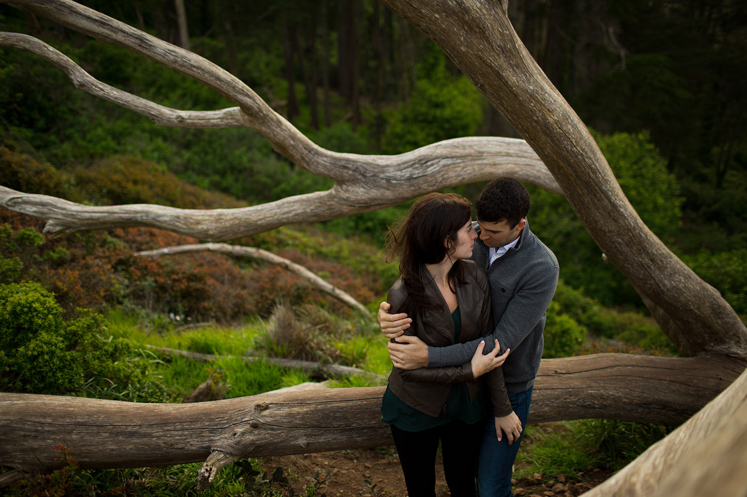 engagement photos at that sf tree
