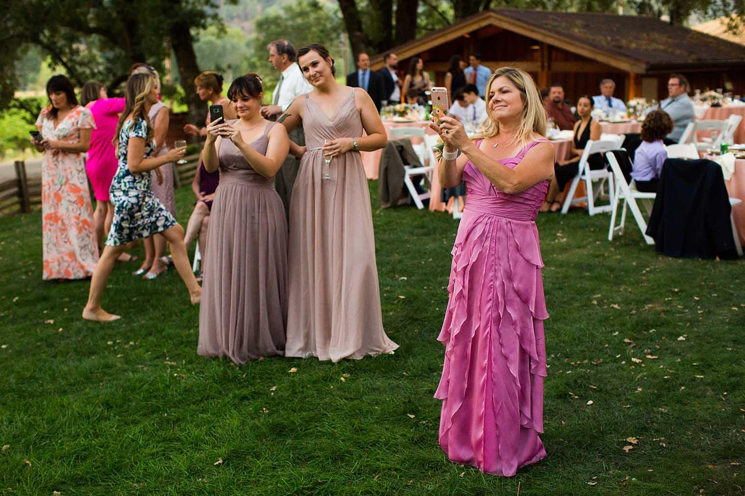 Nelson Family Vineyards Wedding Reception