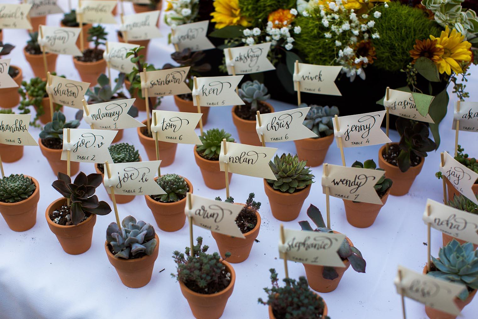 University of California Botanical Garden Wedding